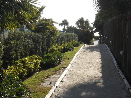 Hampton Inn Cocoa Beach: Walkway to Beach