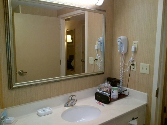 Hampton Inn Boston / Cambridge: Washroom