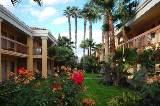 BEST WESTERN Palm Court Inn: Courtyard