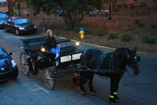 Foley House Inn: Carriage Ride