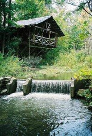 Photo of Pollywogg Holler Eco-Resort Belmont