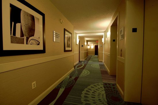 Holiday Inn Express Philadelphia E - Penns Landing: Interior Hallways