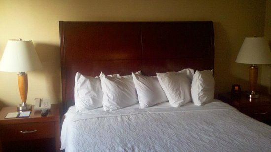 Hilton Garden Inn Los Angeles Montebello: King bed