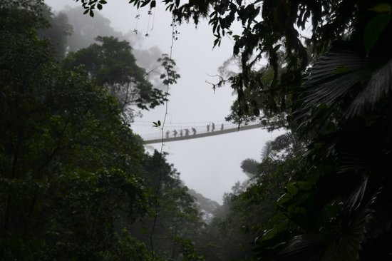 San Carlos, Kostaryka: Tourists walking on a hanging bridge -La Fortuna