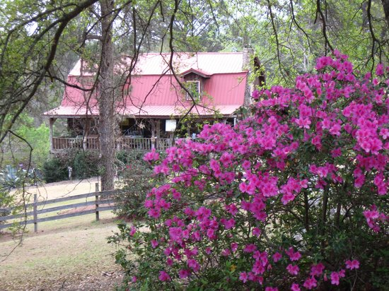 Andalusia, AL: Log Inn and Azaleas
