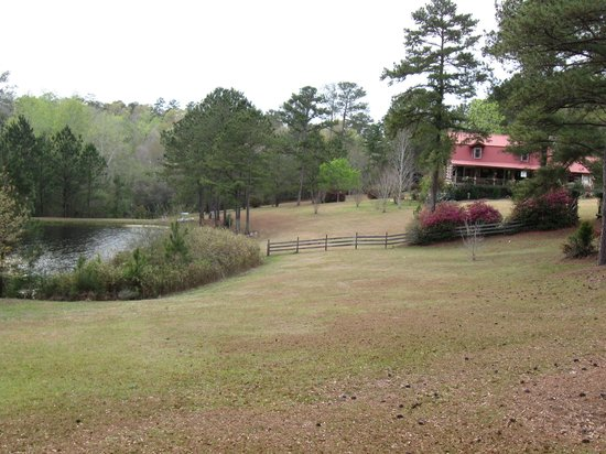 Andalusia, AL: view of Log home with pond