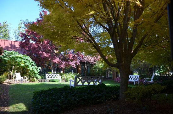 Holiday Inn University-Blacksburg: courtyard in fall