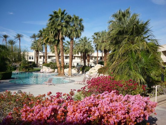 Miracle Springs Hotel and Spa: Main Pool from the lobby area