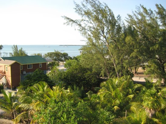 Lazy Iguana Bed and Breakfast: View from the top deck of the Lazy Iguana