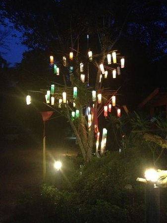 Lanta Coral Beach Resort: we loved the lamp tree