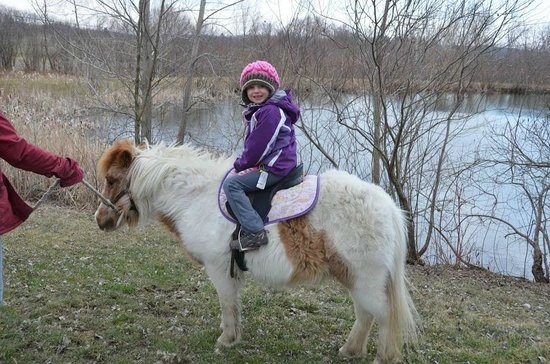 Trumansburg, Нью-Йорк: A pony ride around the pond