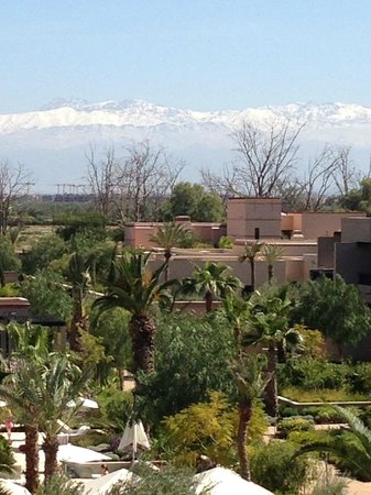 Four Seasons Resort Marrakech: View of snowcapped Atlas from our FS room.