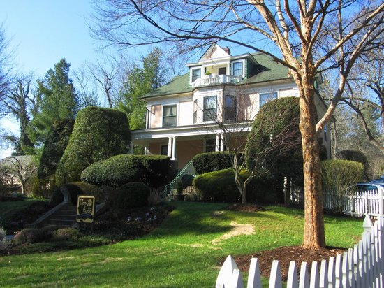 The Lion and The Rose Bed and Breakfast: The Inn with the green of spring just coming in.