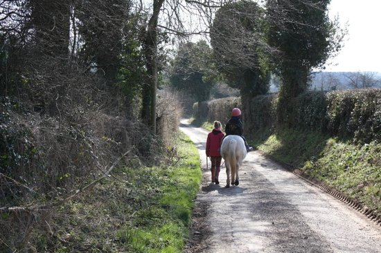 Norton Canon, UK: A walk on Sam from Midland Farm