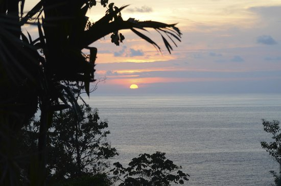 Casa Corcovado Jungle Lodge: From the sunset bar, sigh