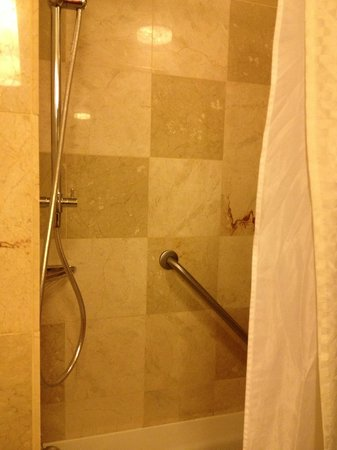 The Westin Detroit Metropolitan Airport: Shower