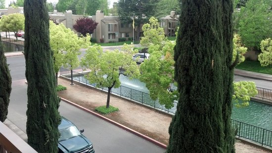 Hilton Stockton: Balcony view