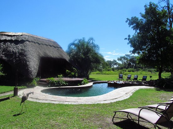 Thorntree River Lodge: pool area