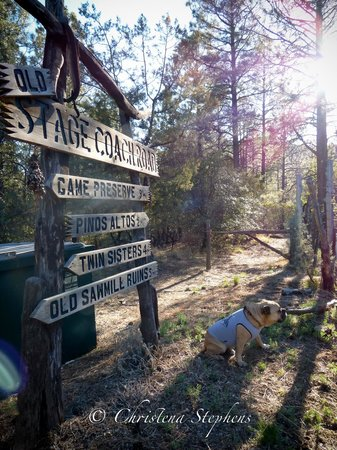 Pinos Altos, NM: Lots of trails and areas to explore right on site