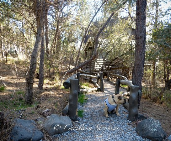 Pinos Altos, New Mexiko: Pathway to the Cabin
