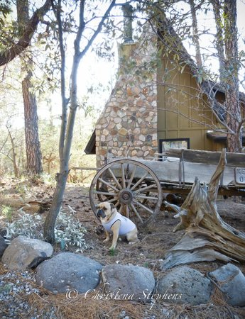 Pinos Altos, NM: Travelin&#39; Jack In front of our cabin at Bear Creek Motel &amp; Cabins