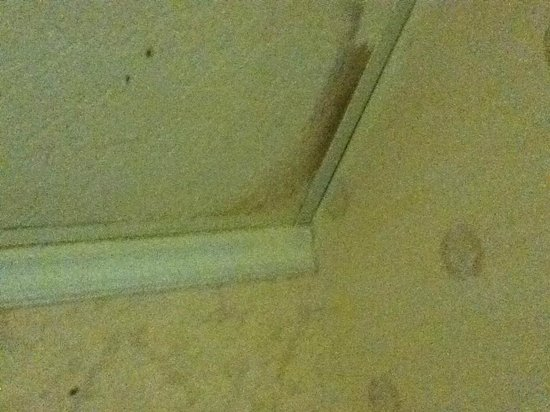 Riverside Motor Lodge: leaks from ceiling