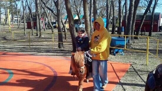 Floral Park, Nowy Jork: pony rides