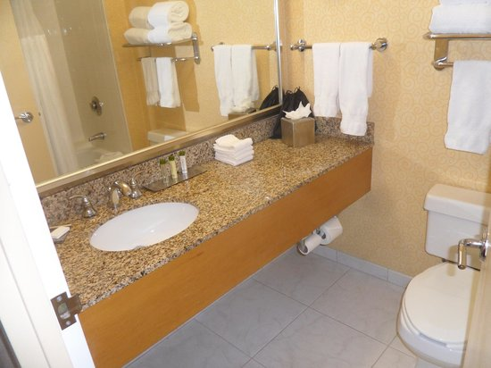 DoubleTree Suites by Hilton Hotel Orlando - Lake Buena Vista : Bathroom