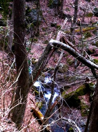 Mountain Rose Inn: Early Spring or late winter on a hike