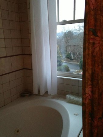 Hill House Bed & Breakfast Inn: View in bathroom