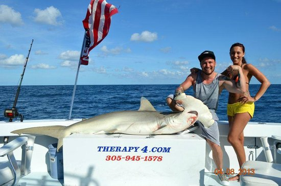 7ft salefish picture of miami deep sea fishing charter for Deep sea fishing miami fl