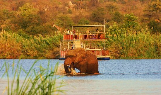 Olifants River Safaris Day Trips