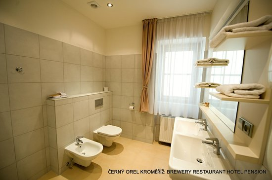 Kromeriz, Tjekkiet: Hotel room bathroom