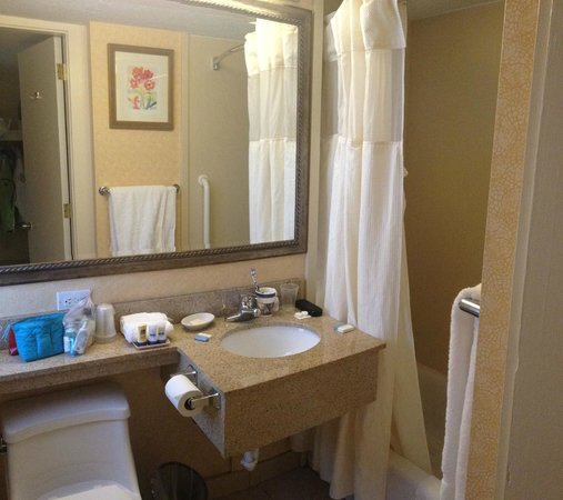 BEST WESTERN University Hotel-Boston/Brighton: bathroom
