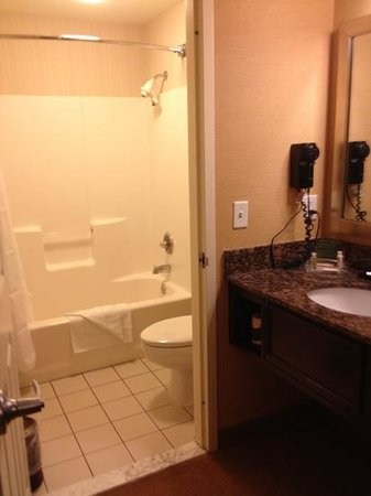 Holiday Inn & Suites Chicago O'Hare Rosemont: separate sink and tub area. not too many counter space