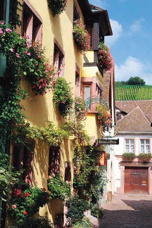 Photo of Hotel l'Oriel Riquewihr