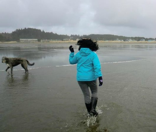 Moclips, WA: Great, big, beach for running and romping even in February!