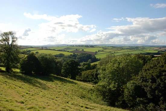 Cornworthy, UK: View from Kerswell Farmhouse towards Dartmoor
