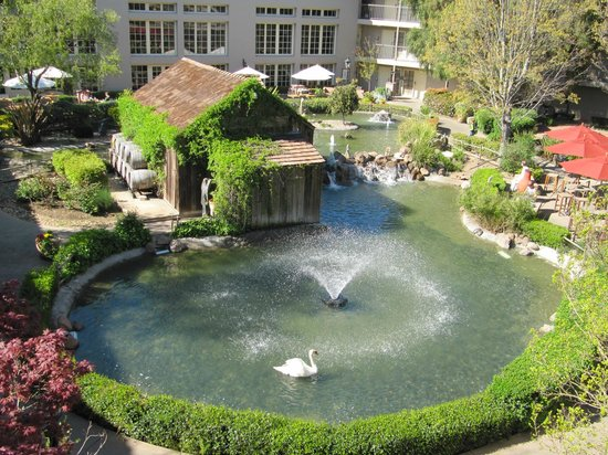 Embassy Suites Hotel Napa Valley: Garden & Pond