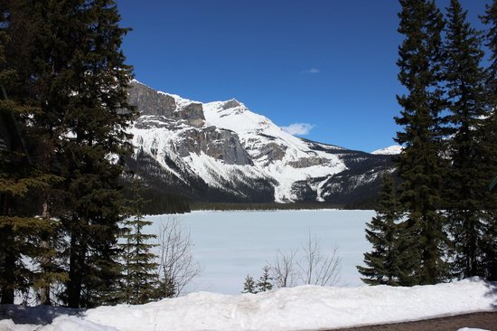 Emerald Lake Lodge : view