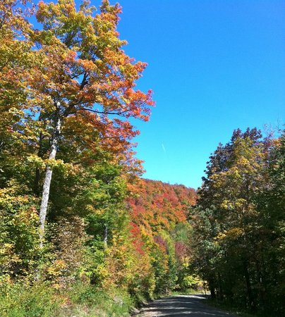 Waren, VT: Roxbury Gap in Foliage