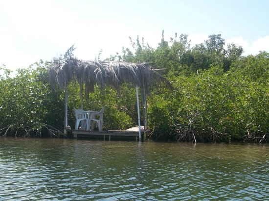 Ally's Guest House Belize: A little palapa on the lagoon