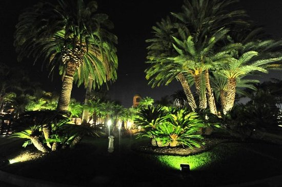 Hyatt Regency Newport Beach: The night does not change the beauty.