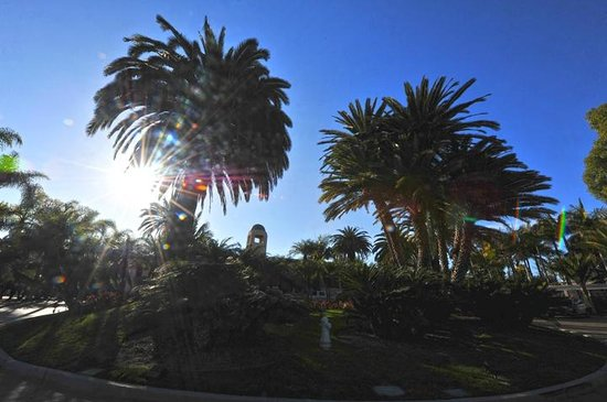 Hyatt Regency Newport Beach: The palm trees and mission architecture are everything one would expect in Southern California.