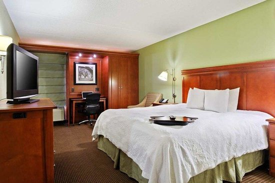 Hampton Inn St. Louis/Westport: King Bed