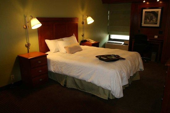 Hampton Inn St. Louis/Westport: 1 Queen Bed Guestroom