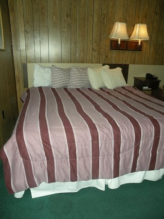 Kingwood Inn: King size bed (bigger I believe)