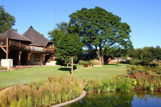 Krugersdorp, South Africa: from the back garden