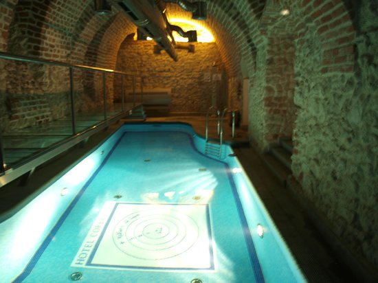 Hotel Copernicus: Pool