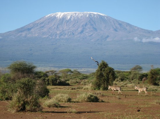 Amboseli Lodges Hotels Amboseli Sopa Lodge mt
